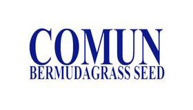 Común Bermuda Grass