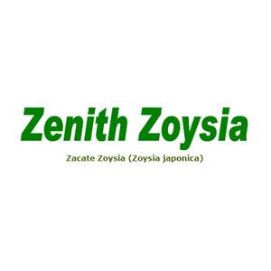 Zenith zoysia archivos semillas san francisco for Zacate de invierno